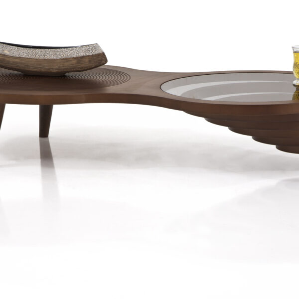 Super Sleek and Stylish Coffee Table