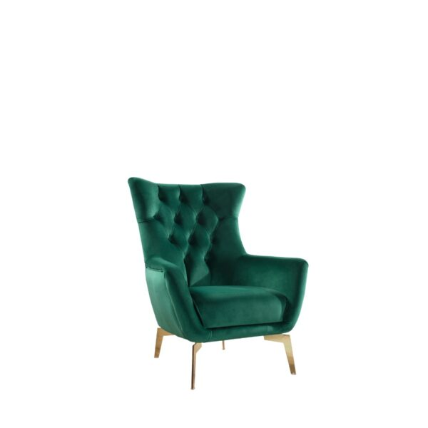 Unique Armchair Green